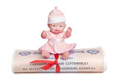Pups sits on top of the state certificate of the Russian Federation of maternal family capital. Rolled into a scroll with a red ribbon stock photo