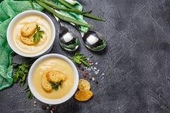 Purè della minestra di verdura immagini stock