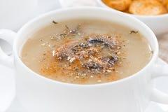 Purè della zuppa di fungo, primo piano Immagini Stock Libere da Diritti