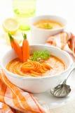 Puré da sopa do vegetariano Fotografia de Stock