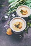 Puré da sopa vegetal Fotografia de Stock