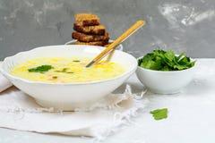 Puré del queso y de la sopa de verduras Fotografía de archivo