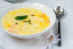 Puré del queso y de la sopa de verduras Imagen de archivo libre de regalías