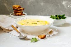 Puré del queso y de la sopa de verduras Imagen de archivo