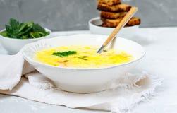 Puré del queso y de la sopa de verduras Imágenes de archivo libres de regalías