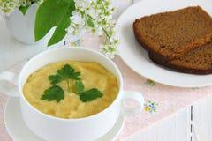 Puré verde de la sopa de verduras Imagen de archivo libre de regalías