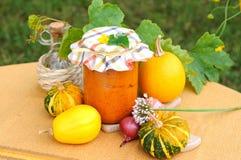 Purée de légumes Photo stock