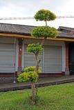 Pura Besakih Bali 18 Stock Image