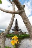 Pura Ulun Danu-Tempel auf einem See Beratan am bewölkten Tag mit grünem Gras und einem gelben Blumenvordergrund bei Bali, Indones stockfotografie