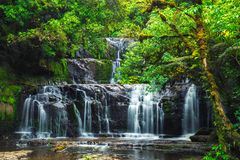 Purakaunui falls at Catlins forest National park. South Island, New Zealand royalty free stock images