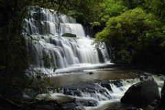 Purakaunui falls, Catlins, New Zealand Stock Images