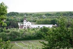 Purcari wytwórnia win, Moldova Fotografia Stock