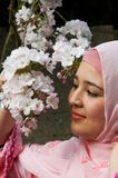 Purdah in springtime. Young smiling islamic woman admiring blossom flowers in springtime Royalty Free Stock Photos