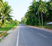 Pure Air with Greenery - Scenic Road with Palm Trees, Havelock Island, Andaman, India. This is a photograph of scenic clear road with greenery and palm trees all royalty free stock photography