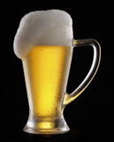 Pure Beer. Stock Image
