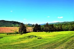 Pure Bliss!. West Virginia [VA] U.S.A - Green grass  meadows.. pure bliss Royalty Free Stock Images