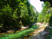 Pure blue water of Radovna river in Vintgar Gorge. Natural waterfalls, pools and rapids and tourist path. Slovenia Stock Photography