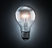 Pure bulb with shining light Royalty Free Stock Image
