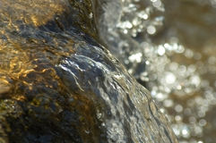 Pure clean flowing water. Mountain stream Stock Photos