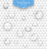 Pure clear water drops realistic set  vector illustration. Transparent water drop Stock Photography