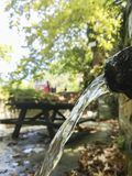 Pure clear water fountain in the woods royalty free stock images