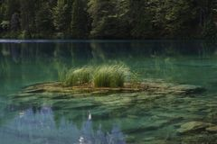 Pure clear water lake Royalty Free Stock Image