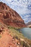 Pure Colorado River Stock Photos