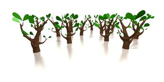 Pure eco tree forest Royalty Free Stock Images