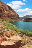 Pure emerald Colorado River Stock Photography