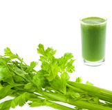 Pure fresh green celery juice in glass isolated Royalty Free Stock Images