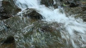 Pure fresh water waterfall in forest stock video footage