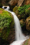 Pure fresh water waterfall running over mossy rocks in the forest.  Stock Photography