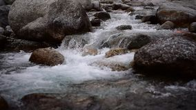 Pure fresh waterfall  in a Himalayan river stock video