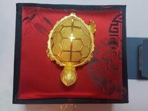 pure gold turtle stock photo
