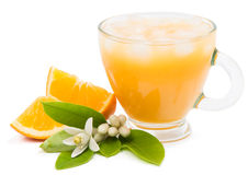 Pure juice with ice and pieces of cut oranges Stock Image