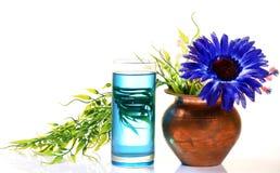 Pure kerosene oil. Kerosene oil glass over white background Stock Photo