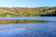 Pure lakes and forests at Fall in Mauricie Park. Fall colours, healthy randoms, pure lakes, wild nature in the oldest Canadian Park in  Province of Quebec Royalty Free Stock Photos