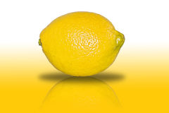 Pure Lemon. A picture of a lemon isolated and overworked. the background fades from white to the lemons` yellow Royalty Free Stock Image
