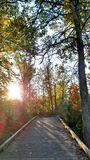 Pure Michigan. Nature Park Fall Colors BetheChange Royalty Free Stock Photo