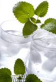 Pure mineral water with ice Royalty Free Stock Photo