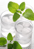 Pure mineral water with ice. Glasses full of pure mineral water with ice Royalty Free Stock Images