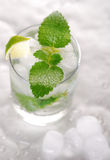 Pure mineral water with ice and lemon Royalty Free Stock Photo