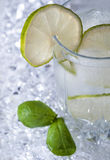 Pure mineral water with ice and lemon. Glasses full of pure mineral water with ice and lemon Royalty Free Stock Photo