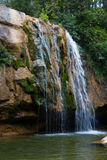 Pure mountain creek with green water Stock Images