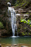 Pure mountain creek with green water Royalty Free Stock Photo