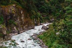 Pure mountain river Royalty Free Stock Photos