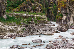 Pure mountain river Royalty Free Stock Image