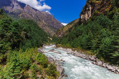 Pure mountain river Stock Photos