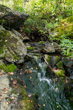 Pure mountain spring flows among stones covered with moss Stock Images