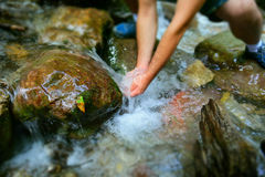 Pure mountain water spring Royalty Free Stock Photos